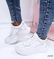 Кроссовки с стиле Баленсиага белые 36-40