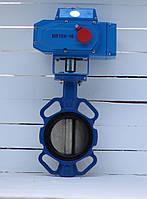 Батерфляй Ду 100 з електроприводом Bundor, фото 1