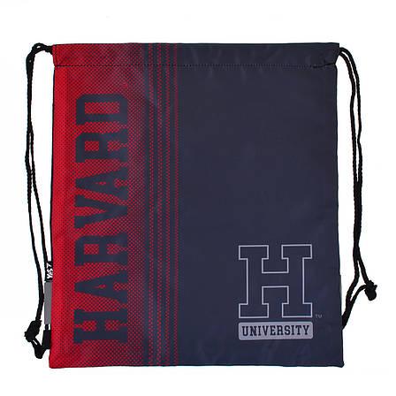 "Сумка для обуви YES  SB-10 ""Harvard""                                                      , фото 2"