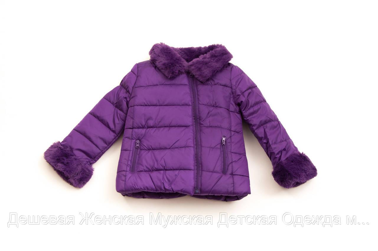 Куртка детская весна-осень