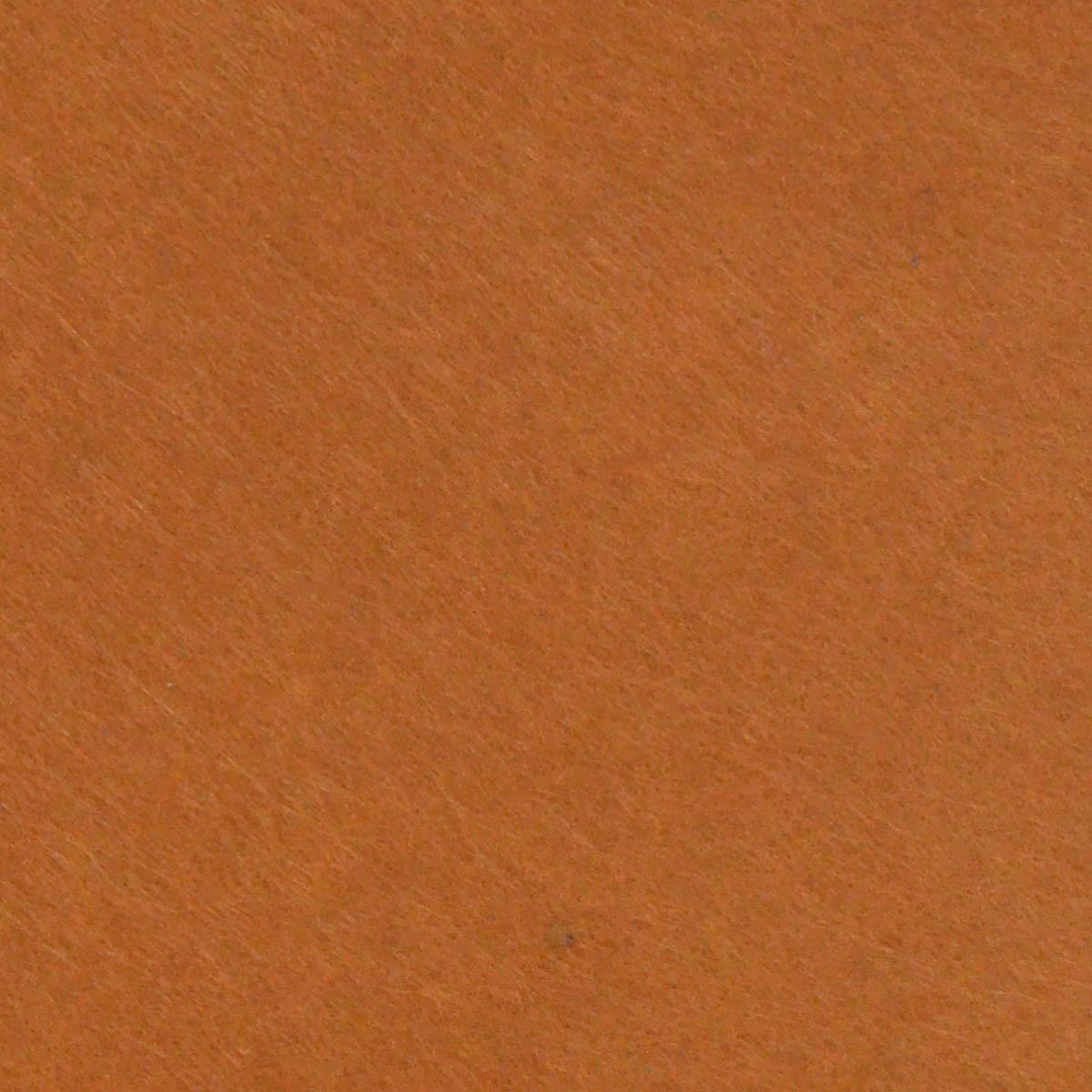 Набор Фетр жесткий, коричневый, 21*30см (10л)