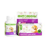 Фитомины Гематокет для кошек № 100 Веда