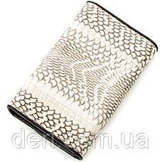 Вертикальный кошелек из натуральной кожи питона серый, фото 2