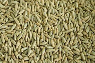 Жито для виготовлення борошна (25 кг. х 12 грн.кг. = 300 грн.)