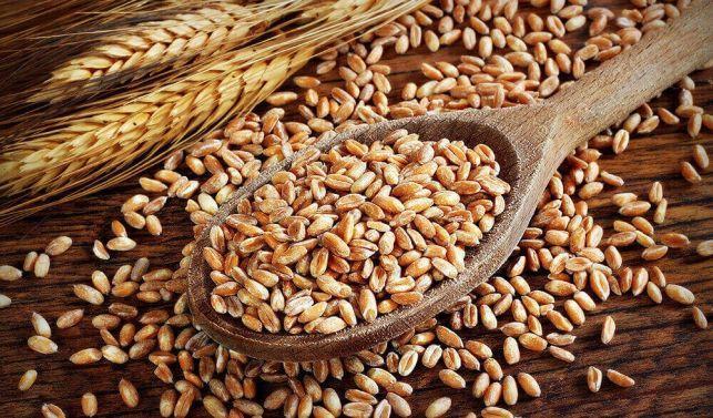 Спельта органічна для виготовлення борошна (зерно в мішках 25 кг.)