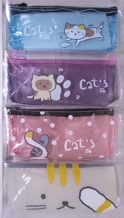 """Пенал-косметичка прозора, """"Коти"""", PVC, 6747, фото 2"""
