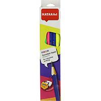 Набор карандашей чернографитных 12 шт Nataraj Neon + ластик + чинка Tiki