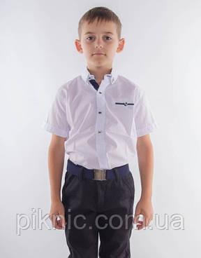 Рубашка белая на 10,11 лет. Короткий рукав, детская, школьная для мальчиков. Турция, фото 2
