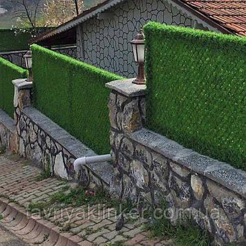 Зелений Паркан