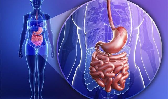 капли для нормализации работы желудка