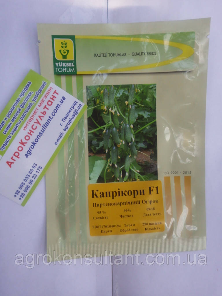 Семена огурца Каприкорн F1 (Yuksel Seeds) 250 семян — партенокарпик, ранний гибрид