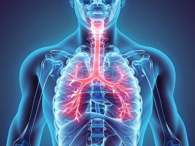 капли для здоровья дыхательной системы