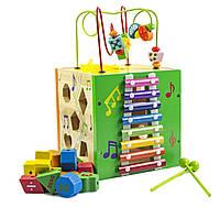 Деревянная игрушка-сортер музыкальный лабиринт (МММ-624)