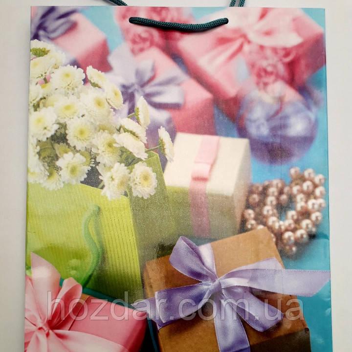 Пакет подарочный бумажный большой вертикальный 25х39х9 (27-141)
