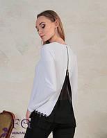 Блуза с кружевом и шифоновой спиной 068/02, фото 1