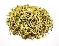 Фиалка трехцветная трава  (душистая, полевая), фото 1