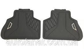 Оригинальные резиновые задние коврики BMW X7 (G07) (51472458555)