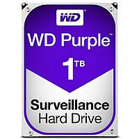 Western Digital Purple 1 TB (WD10PURZ)