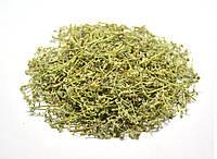 Грыжник голый трава (грыжник гладкий, кильник, остудник, собачье мыло), фото 1