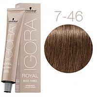 7-46 Краска для волос Schwarzkopf Professional Igora Royal Nude Tones - Средний русый бежевый шоколадный -60мл