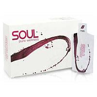 RAIN SOUL Клеточное питание, упаковка 30 пакетиков по 60 мл. Рейн Соул