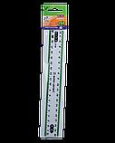 Лінійка 20см пластикова з кольоровою смужкою, фото 3