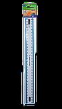 Линейка 30см пластиковая прозрачная с цветной полосой, фото 2