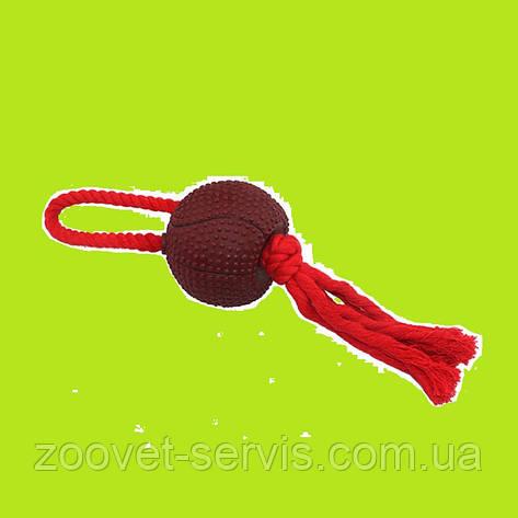 Игрушка грейфер канат Восьмерка с мячом 9,5/40 см ZooMax EV083, фото 2