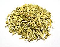 Ярутка полевая трава, фото 1