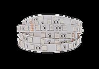 """Светодиодная LED лента гибкая 12V PROLUM™ IP20 5050\60 Series """"PRO"""", Белый (5500-6000К), фото 1"""