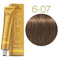 6-07 Краска для седых волос Schwarzkopf Igora Royal Absolutes Age Blend - Темно русые натуральный медный -60мл