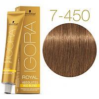 7-450 Краска для седых волос Schwarzkopf Igora Royal Absolutes Age Blend -Средне русые бежевый золотистый 60мл