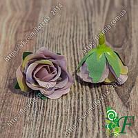 Головка роз МИНИ сиреневый