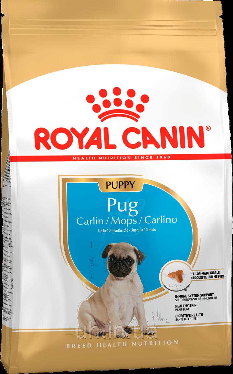 Royal Canin Pug Junior сухой корм для щенков 1,5КГ