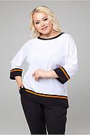 Блуза Дора