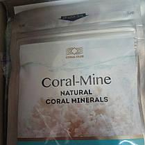 Корал-Майн 10 саше (Коралловая вода) Коралловый Клуб, фото 2