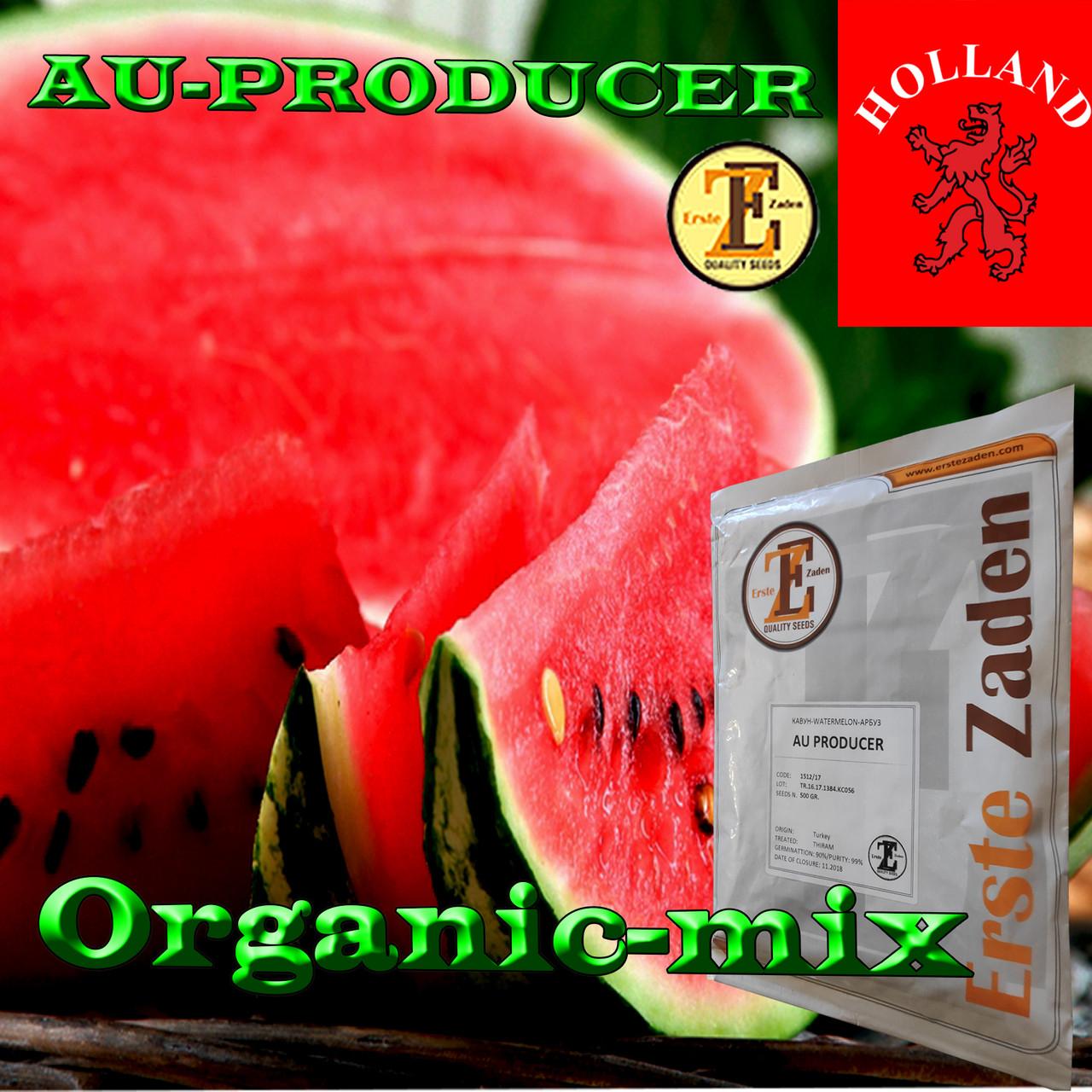 Семена, арбуз АУ Продюсер, Erste Zaden (Турция / Голландия), проф.пакет 500 грамм