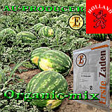 Семена, арбуз АУ Продюсер, Erste Zaden (Турция / Голландия), проф.пакет 500 грамм, фото 2