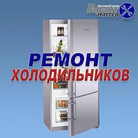 Ремонт холодильников в Бердянске