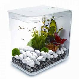 Аквариумы для рыб и комплектующие