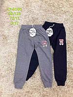 Спортивные штаны для девочек оптом, S&D, 98-128 см,  № CH-6005