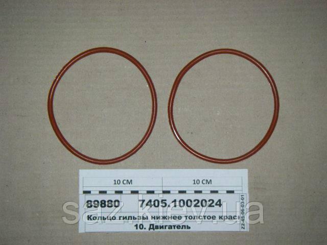 Кольцо гильзы нижнее толстое красн. силикон (КАЗАНЬ), 7405.1002024, КамАЗ