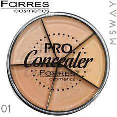 Farres - Консилер палитра круглая 5-цв. Pro Concealer Тон 01