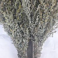 Веник для бани из полыни