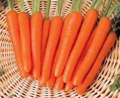 Морква  Нантес 20г (Проф насіння)
