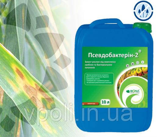 Фунгицид биофунгицид Псевдобактерин 2