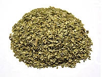 Ряска малая трава, фото 1