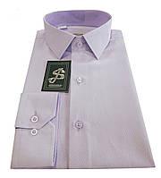 Сорочка чоловіча приталена №10-12 -8113 Lila