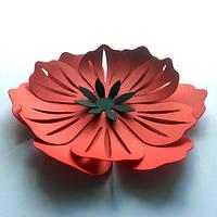 Інтер'єрні 3d наклейки набір Об'ємні квіти з картону (маки, квіти з паперу, декор стін)