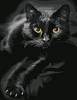 """Картина по номерам """"Черный кот"""", ArtStory, AS0623"""